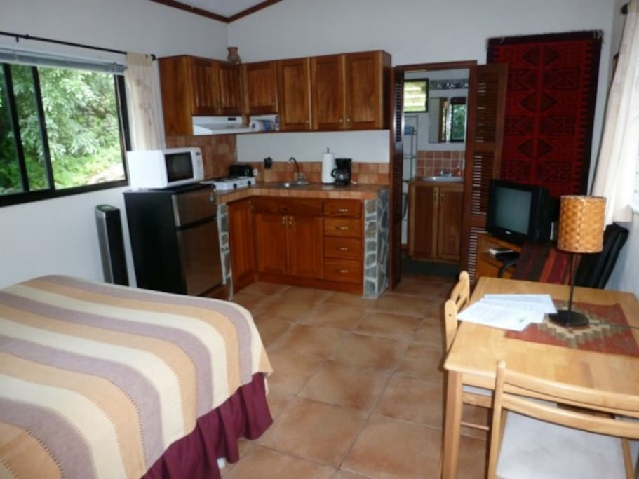 ONE ROOM, SLEEPING AND KITCHEN AREA