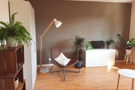 Charme et nature à Strasbourg - Straatsburg - Appartement