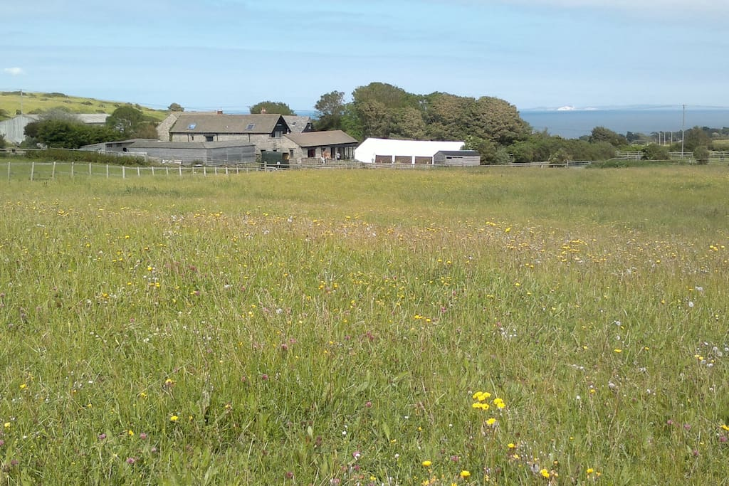 The barn lies in high species meadows with seaviews