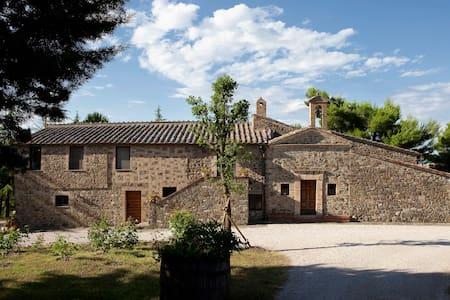 Montalcino - San Filippo - Flat