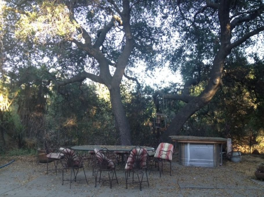 Backyard. Seats 8. 100 year old Oak.