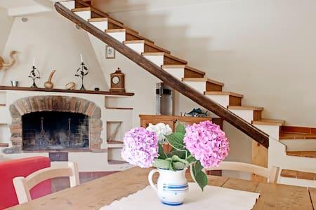 Simplicity in Organic Farmhouse - Greve in Chianti - Leilighet