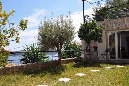 Nice studio with garden & sea view - Lägenhet