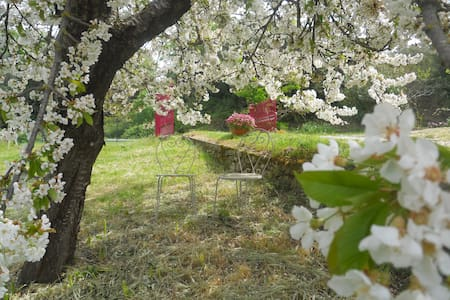 Lovely Country House in Umbria - Poggio - Flat