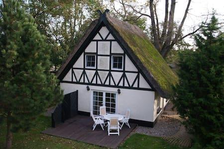 Abgelegenes Hühnerhaus mit Reetdach - House