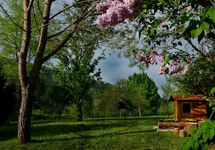 Patufet, gran jardín ideal niños - Sant Joan les Fonts - Hus