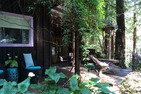 Rustic cottage in Sonoma redwoods - Occidental - Cabin