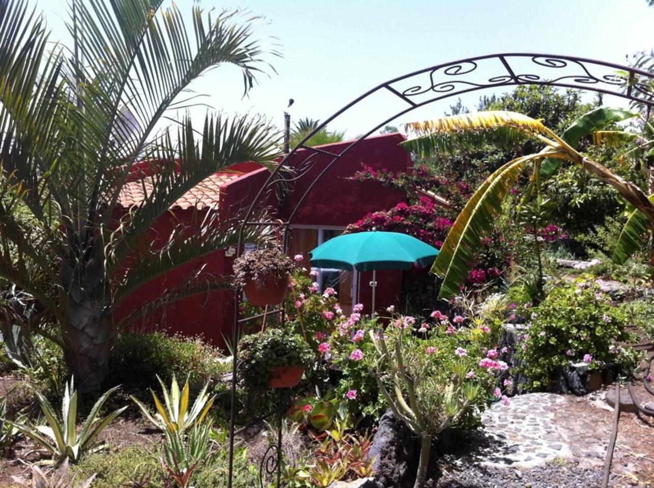 Casitta Estrella Isla La Palma
