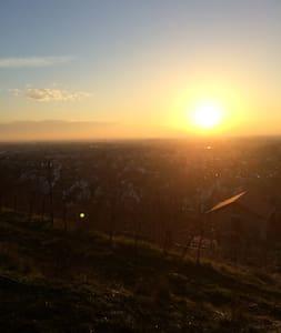 Gemütliche Wohnung bei Heidelberg - Schriesheim - Pis