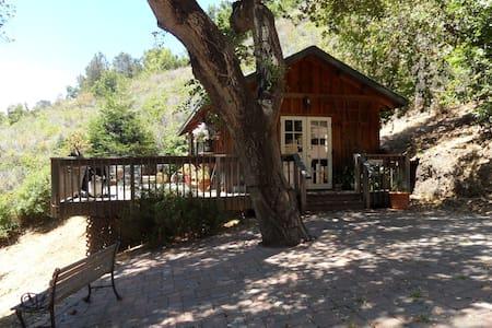 Big Sur Private Cabin - Cottage
