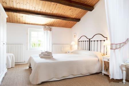 AlombreduFiguier 10'La Rochelle ch2 - Longèves - Bed & Breakfast