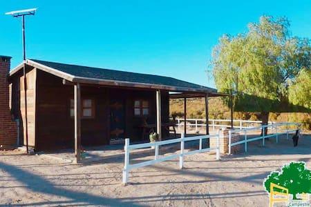 Camping y cabaña Campestre en Tecate - Tecate