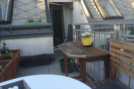 cozy rooftop apt near city centre