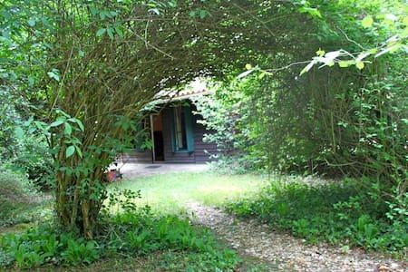 CHAMBRE D'HOTE dans chalet bois, ZONE NATURELLE ! - Neuvic - Bed & Breakfast