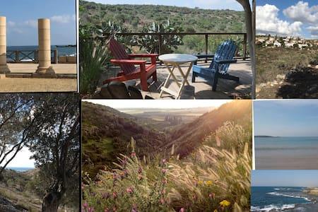 Nature Reserve Apartment - Zikhron Ya'akov - Apartment