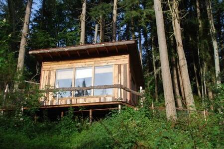 Wabi Sabi Cabin in the Woods
