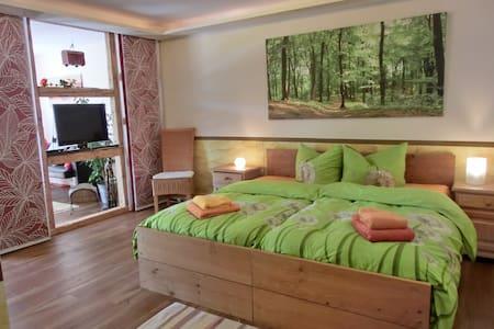 barrierefreie Ferienwohnung , Haustiere erlaubt - Lindenberg im Allgäu - Apartamento