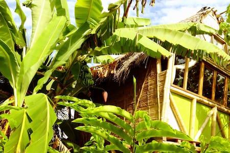 La Jungla Bungalows- Vanuatu - Lombház