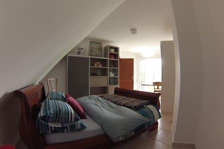 Chambre spacieuse et agréable. - House