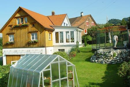Grosses Zimmer mit Bodensee-Sicht - Heiden - Huis