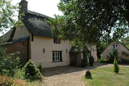 Superb thatched cottage, Dorset - House
