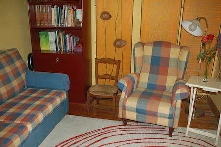 Apartamento céntrico en Errenteria - Apartment