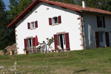Ferme Basque 18ème restaurée 20pers - Saint-Jean-le-Vieux - Villa