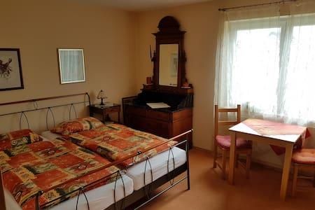 1 Doppelzimmer mit Dusch- und Wannenbad - Apartment
