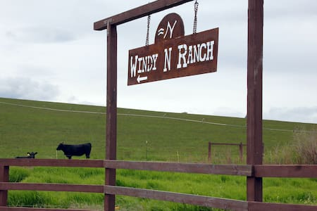 Stay in our studio on our ranch - Ellensburg