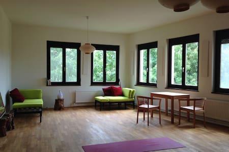 einzimmer/küche/bad  77m2;  grün - Apartament