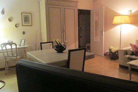 T3 LUMINEUX CENTRE VILLE RODEZ - musée Soulages... - Rodez - Apartmen