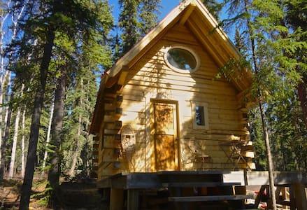 Bird House/ Cabin, Marsh Lake, YT