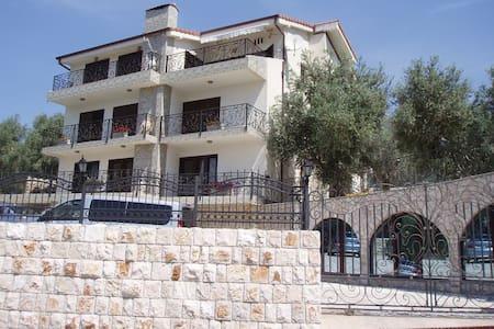 Villa - stari Bar
