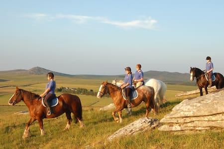 Hallagenna Riding & Holiday Cottage - St Breward