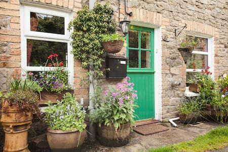 COSY COTTAGE IN CARMARTHENSHIRE