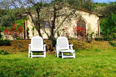 Gorgeous cottage near Cortona - La Dogana - Vila