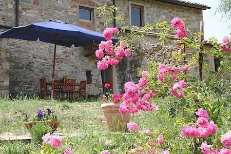 Simplicity in Organic Farmhouse R - Greve in Chianti - Apartment