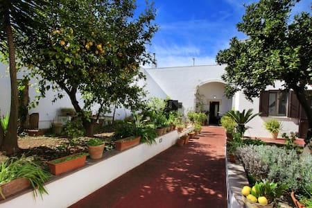 Double room Presicce in Salento - Presicce - Bed & Breakfast