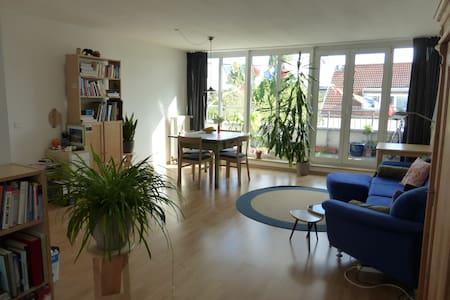 Wonderful flat with big roof-deck