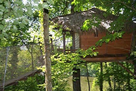 La cabane dans les arbres SHANGHAI - Blockhütte
