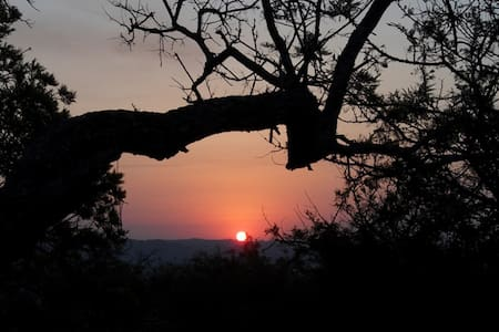 Come Camp On Our Bushveld Plot