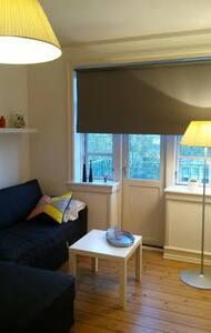 Very cozy 45m2 studio apartment