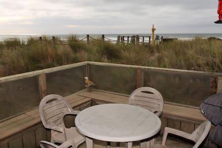 Steps away from beach- shorebird 41
