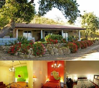 Splendida stanza con bagno privato e vista mare - Amantea - Bed & Breakfast