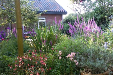 Eco Cottage Rosa 2 pers. - Zeist - Hytte