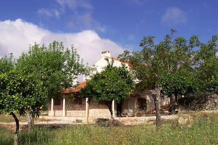 Rural spacious house near Tomar - Hus