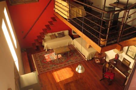 Loft en edificio histórico. - Buenos Aires - Pis
