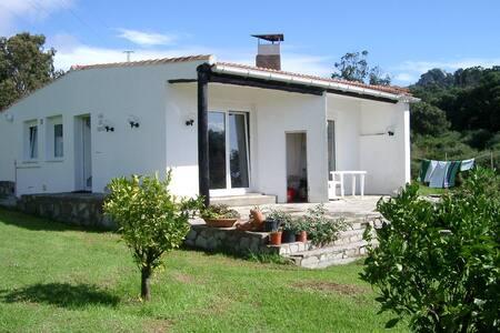 Ferienhaus im Naturpark mit Pool - Dom