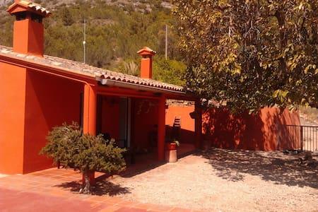 Casa de campo en Alzira, Valencia