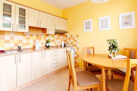 2+1 plně vybavený byt - Mikulov - Appartement